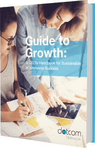 Guide to Growth: A Ceo's Handbook for Sustainable Ecommerce Success